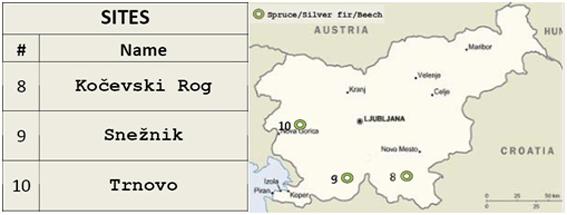 Slovenian Sites